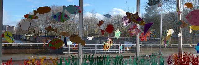 Hanekampbrug, aquarium, vissen, Zwolle, Angela van Malssen